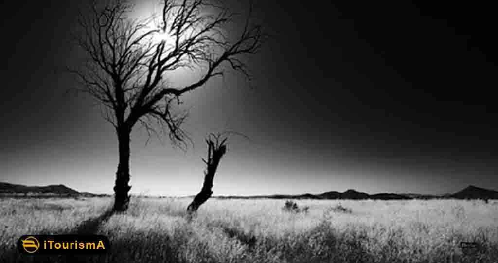 نور از ارکان اصلی و عمده در عکاسی می باشد. بکارگیری صحیح نور در تصویر، به میزان دیگر عوامل مانند ترکیب بندی و غیره مهم است