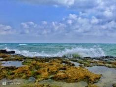 ساحل دریای جنوب